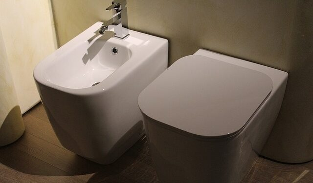 Toto toilet and bidet